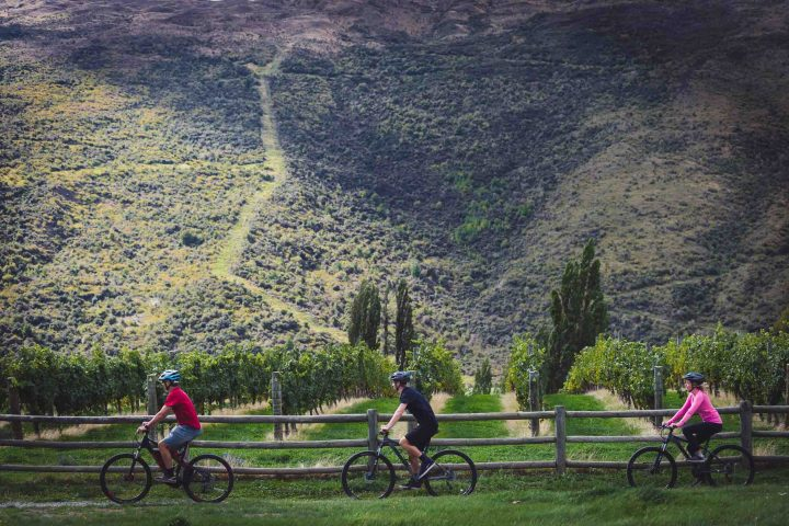 Riding beside epic scenery in the Gibbston Wine Valley